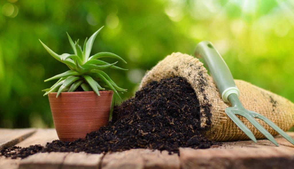 Cara Praktis Bikin Kompos Dari Sampah Organik